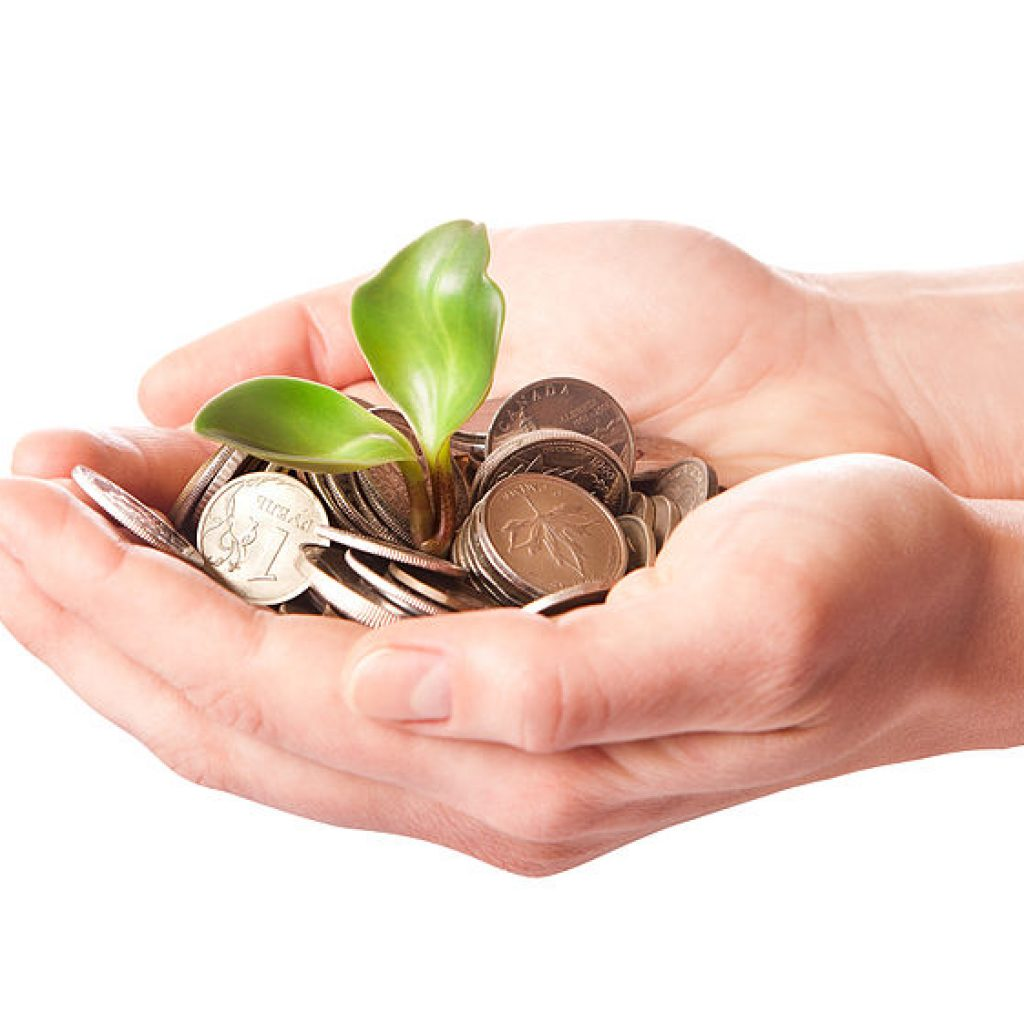 Hands with Coins and plant